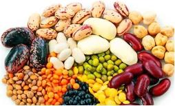 kacang kacangan pantangan asam urat