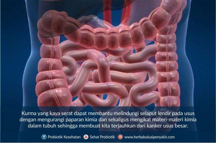 manfaat sari kurma untuk usus