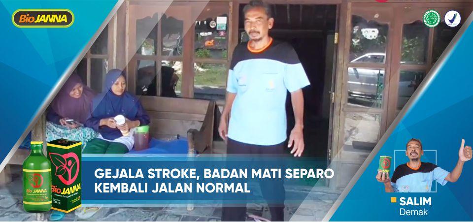 obat herbal penyakit stroke
