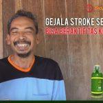 obat herbal gejala stroke