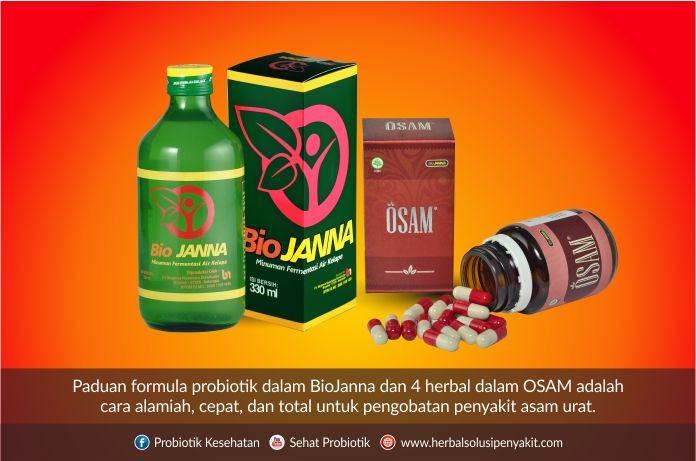 osam obat asam urat biojanna
